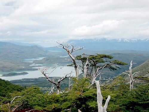 אזור האגמים, פטגוניה, צ'ילה, ארגנטינה