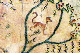 אריה הרים, פומה, קרוגר, מפת פירי רא'-איס, פטגוניה, ארגנטינה