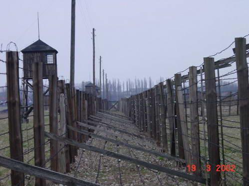 מחנה ההשמדה אושוויץ-בירקנאו בפולין