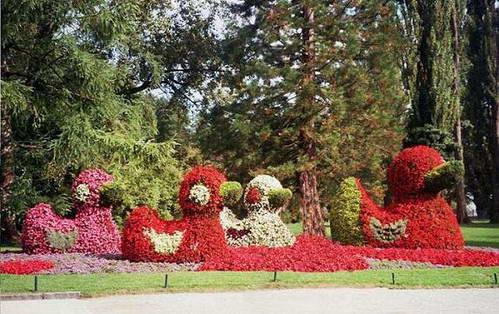 אי הפרחים באגם קונסטאנץ, גרמניה