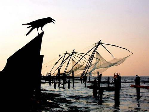רשתות הדיג הסיניות ועורב הממתין לשאריות מזון - מסמלי קוצ'ין