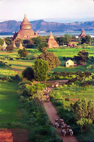 כרכרות השוורים בנוף בגאן, מיאנמר