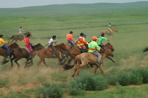 מונגוליה - מרוץ הסוסים הגדול