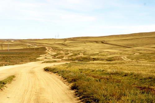 דרך אופיינית במישורי מונגוליה