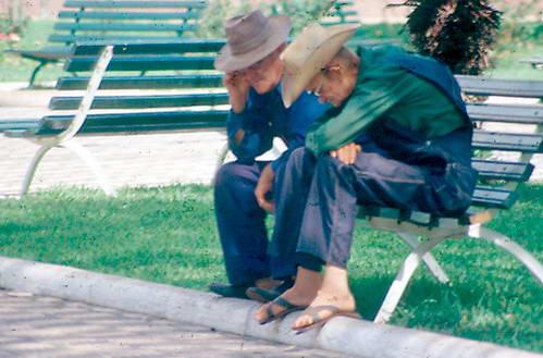 מונוניטים בפרגוואי
