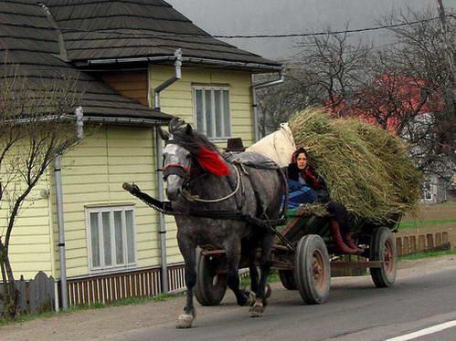 עגלה עם כוח סוס אחד, רומניה האותנטית
