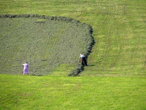 עיבוד שדות בשיטות המסורתיות