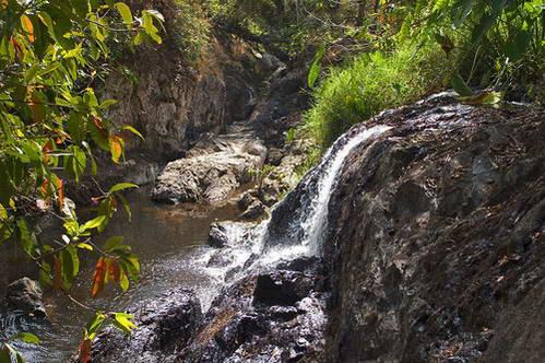 שמורת הטבע קאו-יאי