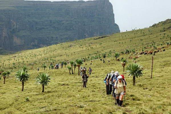 טרק להרי סימיאן, אתיופיה