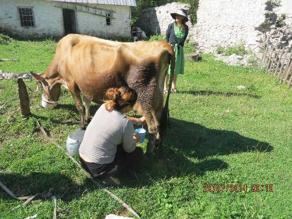 אלבניה - החיים הפשוטים והטובים