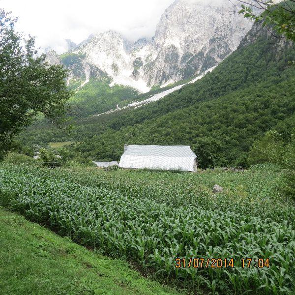 אלבניה - מסלול להר רוסיט