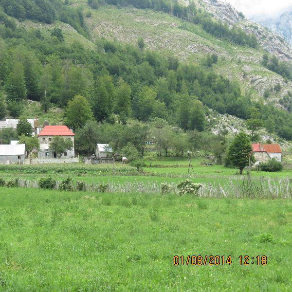 אלבניה - נופים ירוקים מקסימים