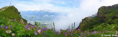 הגן האלפיני, קיצביל הורן, טירול, אוסטריה