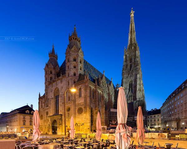 הקתדרלה של וינה