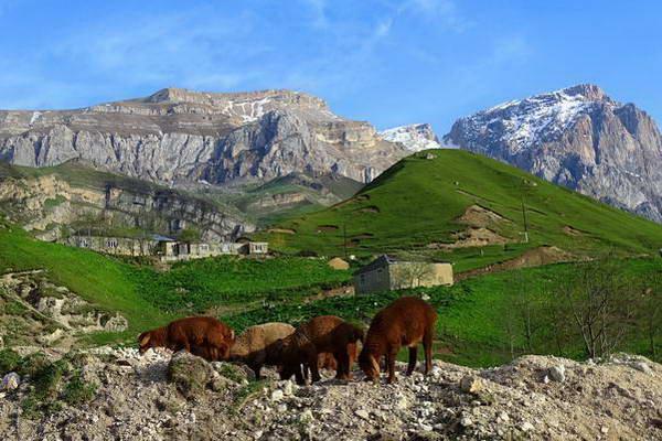 הכפר לאזה, אזרבייג'ן