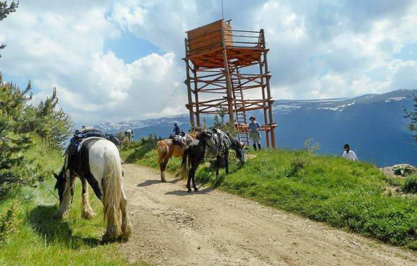 טיול סוסים בבולגריה