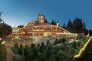 מלון מומלץ בהרי רילה בעיירה בורובץ