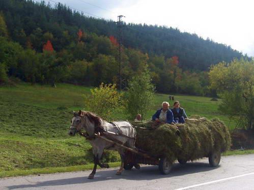 עגלה עמוסת חציר, בולגריה