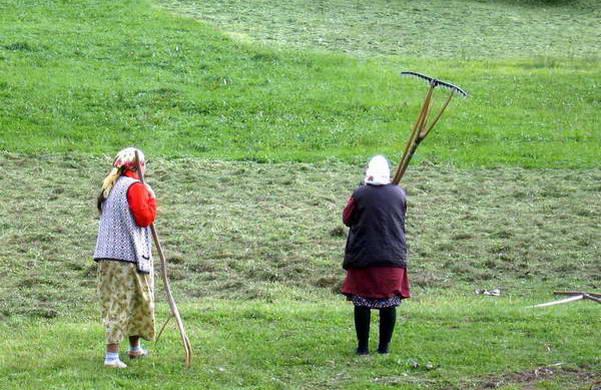 בולגריה עם ילדים, עבודה בשדות