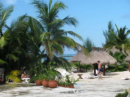 קרוז לקריביים, קוסומל