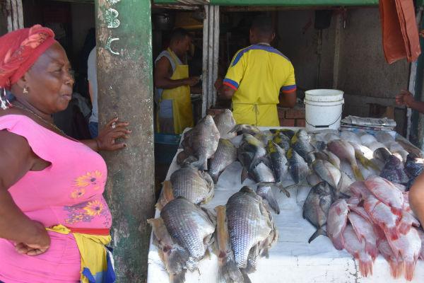 שוק הדגים של קרטחנה