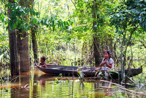 קולומביה, יערות האמזונס