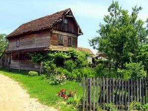 בית עץ בלקניק