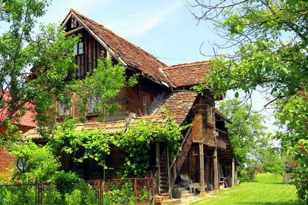 בית עץ בלקניק של כנר על הגג