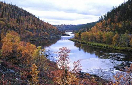 פינלנד, יערות ואגמים
