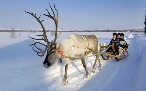 פינלנד, מזחלות שלג