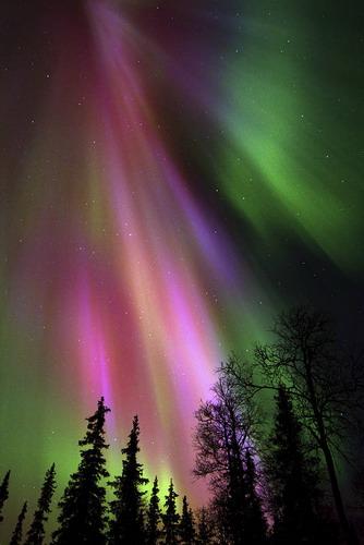 זוהר הצפון, פינלנד, לפלנד