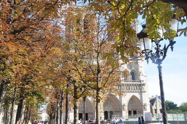 כנסיית נוטרדם, פריז