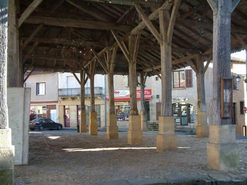 שרידי מבני עץ בערי המצודה