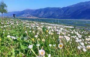 אביב בצפון יוון
