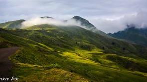 פריחה, צפון יוון