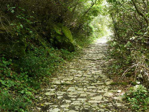 מסלולים בדרכי אבן בפיליון