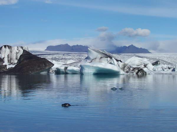 קרחון ואטניוקול, איסלנד