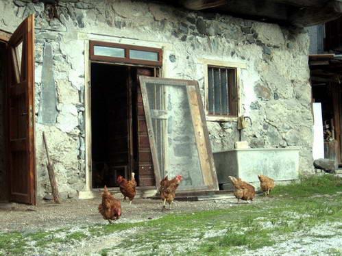משק בכפר הקטן אנדרץ, איטליה