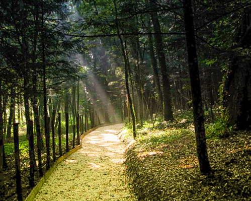 שמורת טבע בהרים של מחוז מוליזה