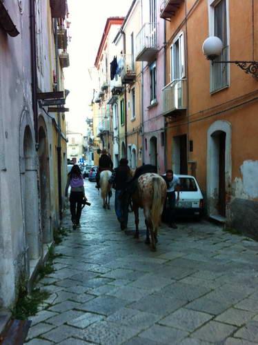 מוליזה, טיול סוסים, בויאנו