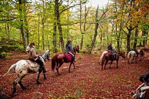 דרום איטליה, מוליזה, טיול סוסים