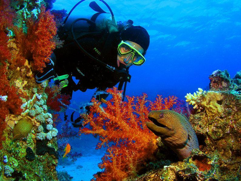 ספארי צלילה בירדן
