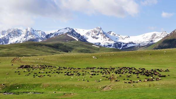 טרקים בקירגיסטן