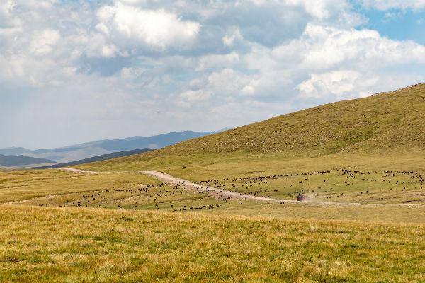 נופים בקירגיזסטן
