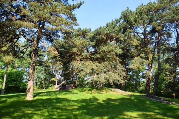 עיירת הנופש פלאנגה, פארק בירוטה
