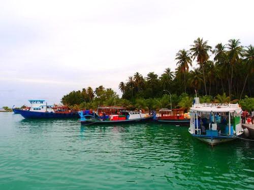האיים המלדיביים, סירות דיג מקומיות