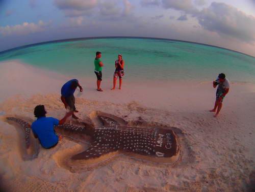 האיים המלדיביים, אי לא מיושב