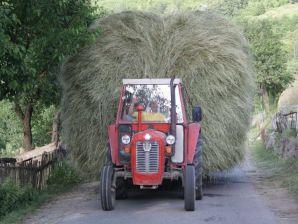 בדרכי מונטנגרו