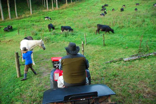 ניו זילנד, אירוח בחווה HIT