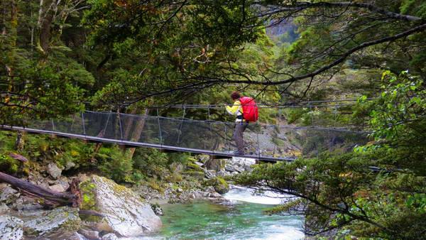 טרק רוטברן, גשר תלוי